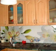 Кухонные фартуки из АВС пластика